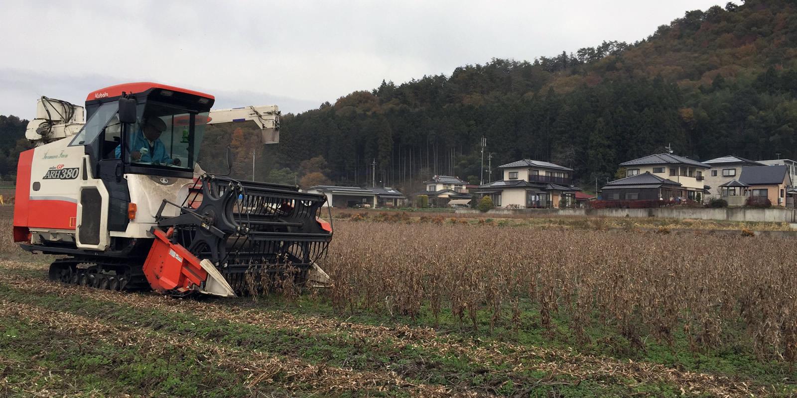 岩村ファーム 大豆の収穫作業